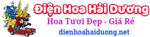 Điện hoa Hải Dương – LH: 0947.190.333, đặt hoa online, giao hoa tại nhà, shop hoa tươi, cửa hàng hoa tại Hải Dương